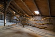 The Sublime IV, 2015 | 350cm (X) x 150cm (H) x 100cm (Z) | Dead wood, strings