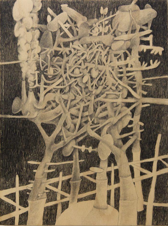Entanglement IV, 2019 | Charcoal on wood panel | 30cm x 40cm