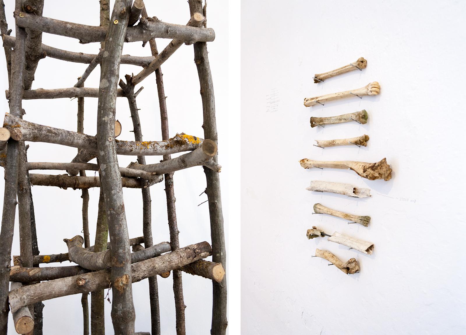 Left - Found bones from 2016 - 2018