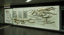 The Sublime V, 2015 | 350cm (X) x 250cm (H) x 150cm (Z) | Dead wood, strings