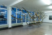 The Sublime VII, 2016 | 450cm (X) x 250cm (Y) x 130cm (Z) | Dead wood & strings